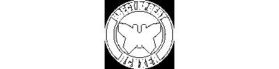 Логотип проекта «Психея»