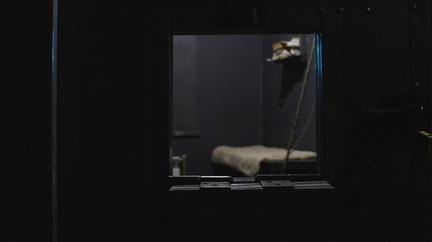 """Квест «Побег из тюрьмы """"Алькатрас""""» от компании «Корпорация праздников»"""